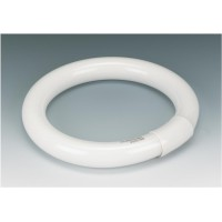Image for Circular Lamp Tube Bulb Fluorescent 8 Inch 4 Pin 22W Triphosphor